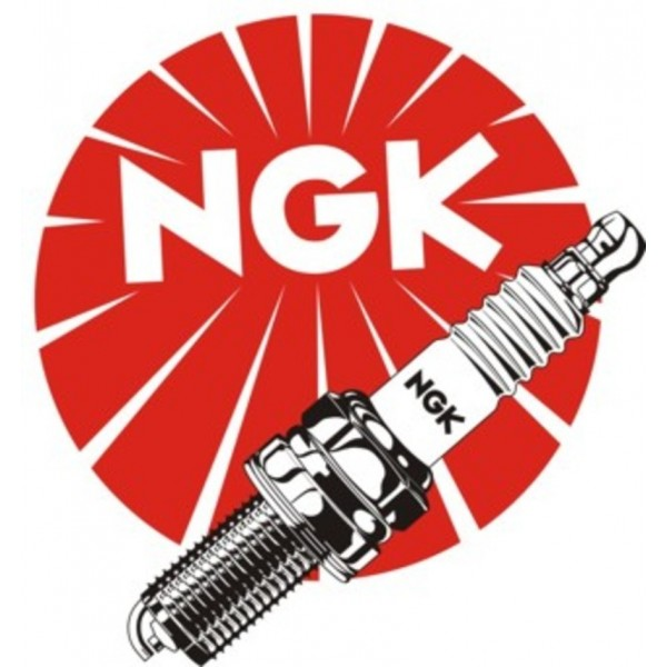 Bougie's NGK